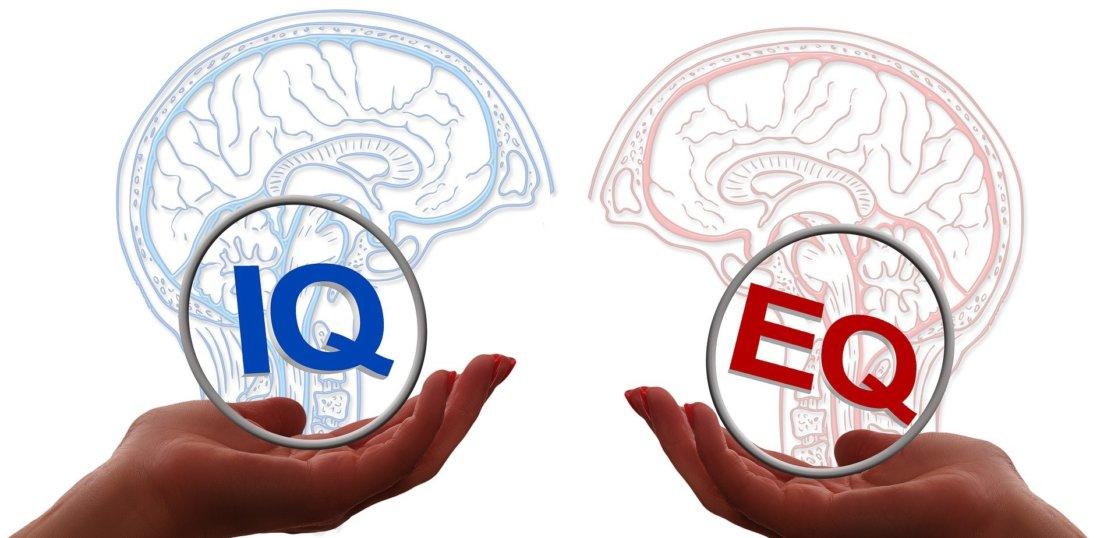 IQ vs EQ