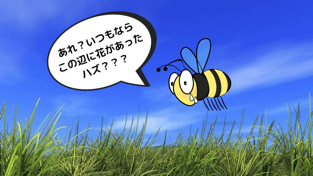 花が見つからない蜂